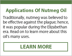 nutmeg oil for pain